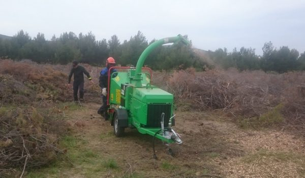 NP Krka - Arborist 150 usitnjavanje drvene mase